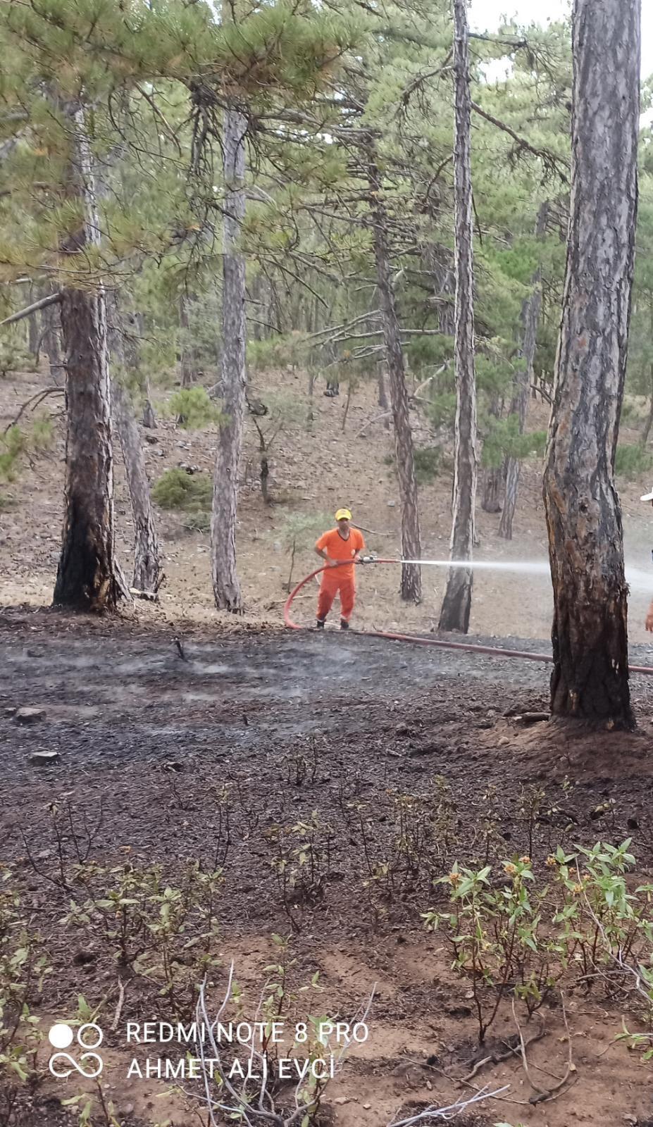 Köyümüzde orman yangını meydana gelmiştir
